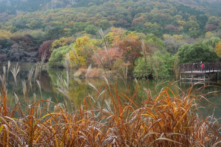 lake 050