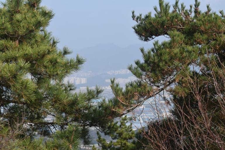 mountain 069