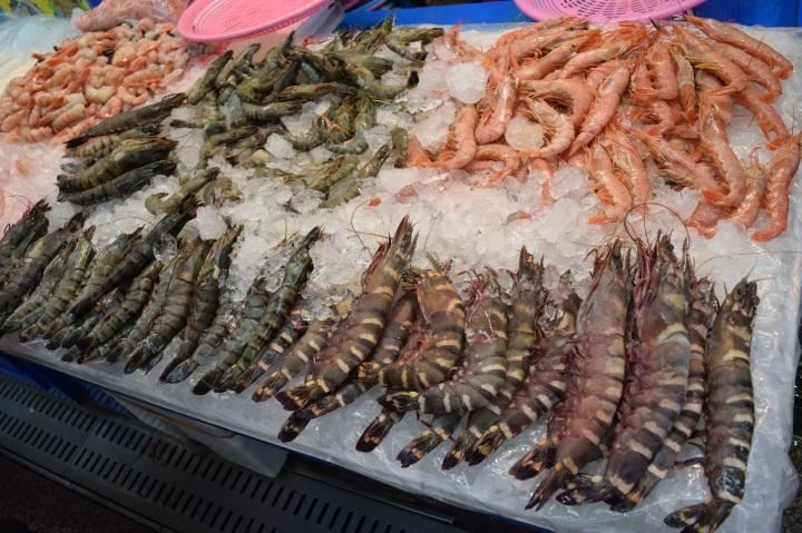 Busan fish market 020
