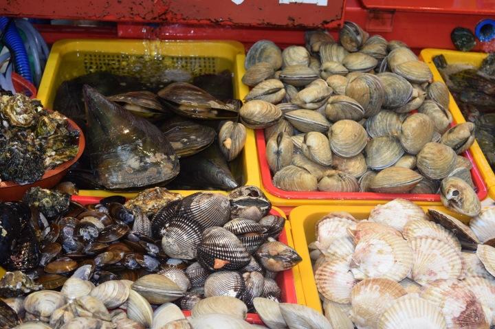 Busan fish market 021