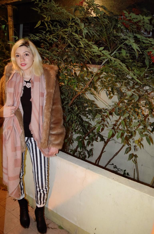 stripe and fur 012